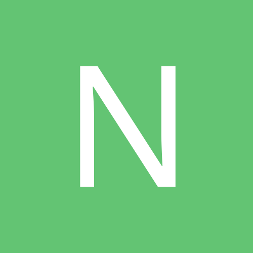 nba313