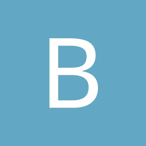 Berberlöwe