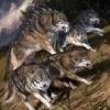 Wolfpacker